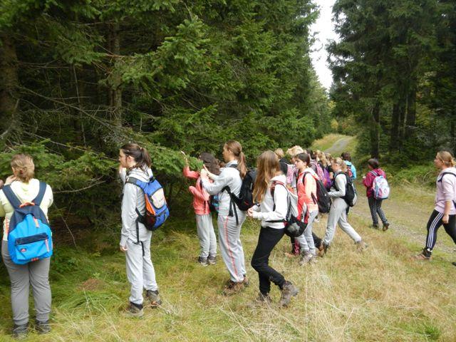 14-naravoslovni-tabor-pohorje-2015
