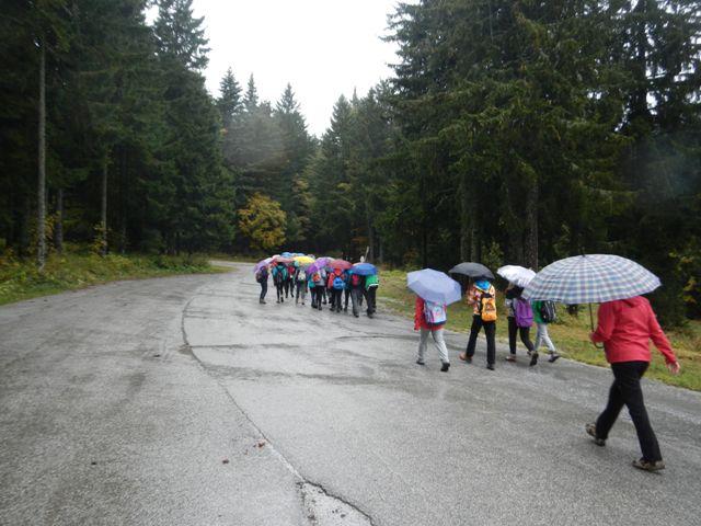 26-naravoslovni-tabor-pohorje-2015
