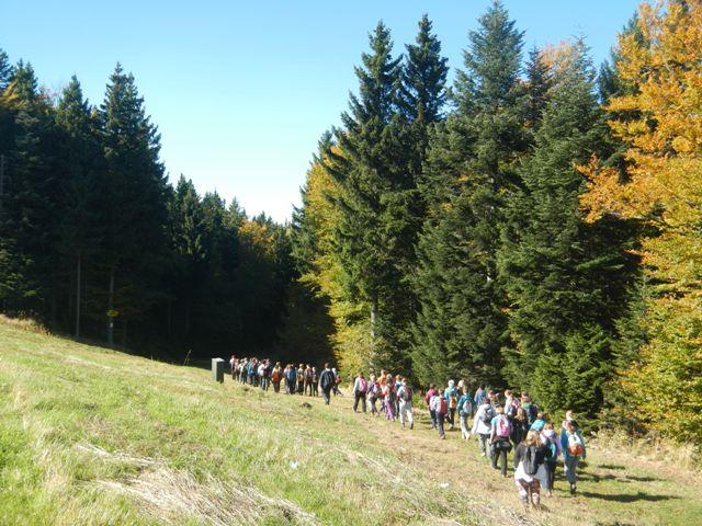 7-naravoslovni-tabor-pohorje-2015