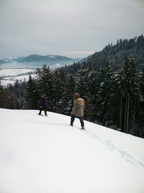 zimski-c5a1d-37