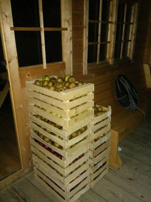 jabolka-čakajo-na-predelavo