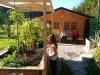 Šolski vrt - jesen